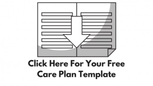 Free Care Plan Template